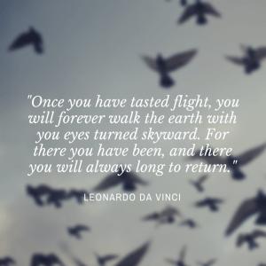 Da Vinci Quote.