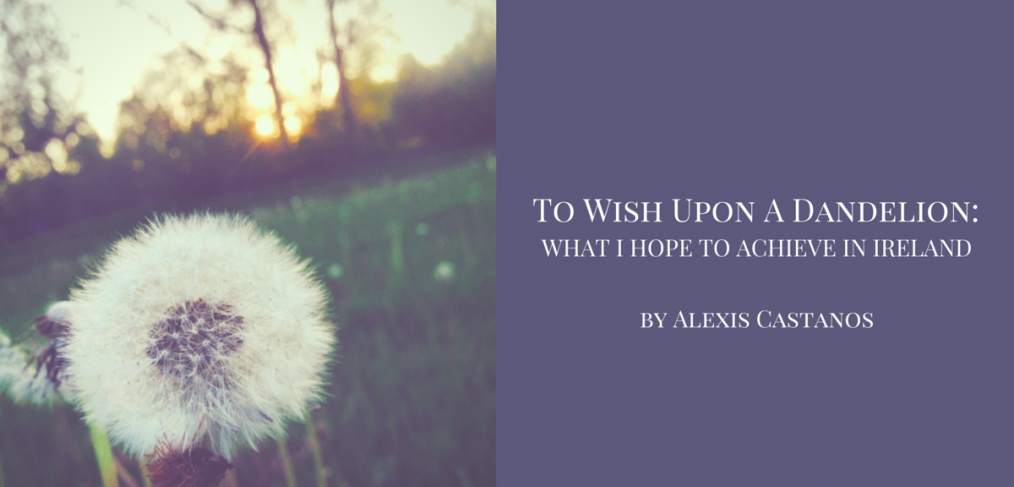 To wish upon a dandelion